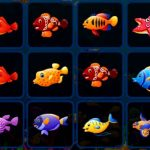Fish Cards Match