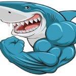 Mads Shark